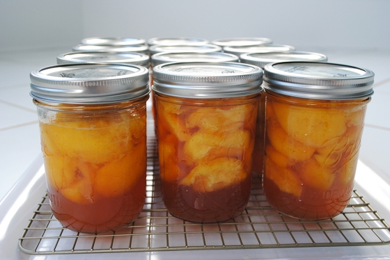 Finished jars of pickled peaches